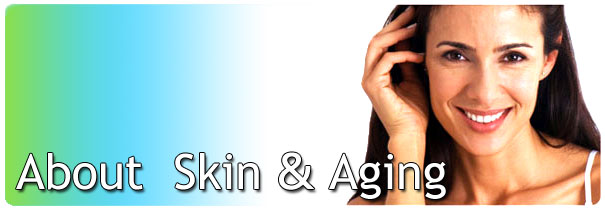 About Skin and Aging
